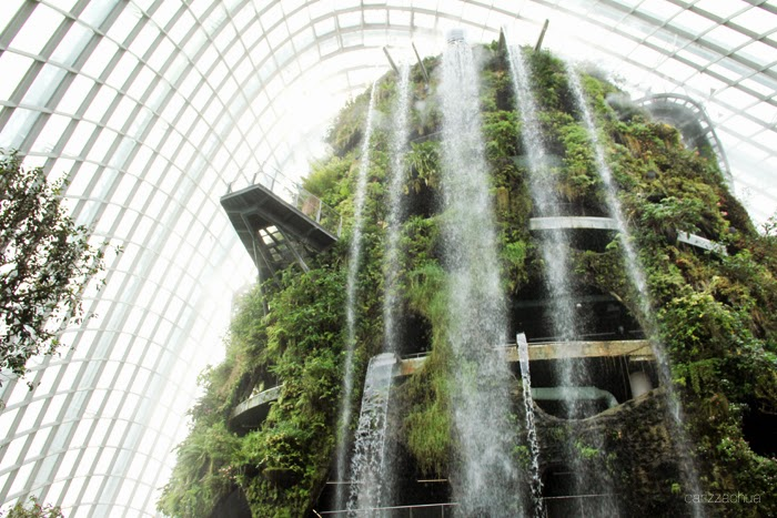 cloud-forest-singapore-1